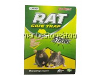 Mouse & Rat Sticky Glue Trap Boards for Pest Control
