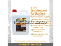 500ML OR 5 LITER SANISAR SURFACE DISINFECTANT KILL 99.9% GERMS AND BACTERIA SANITIZER